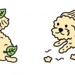 ふわふわの犬
